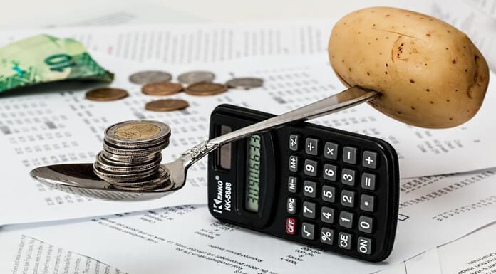 Establish a Budgeted Business Plan