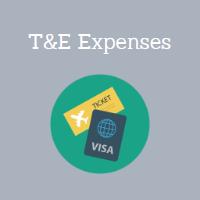 T&E Expenses
