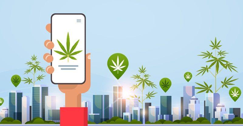 buy cannabis using online dispensary