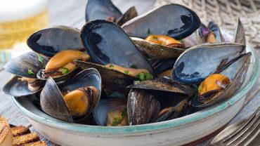 buy fresh mussels