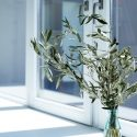 choose the best window glazing