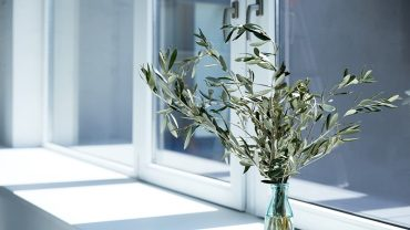 choose the best window glazing