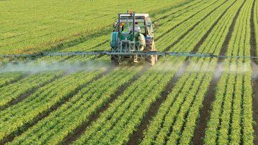 crop farming business plan