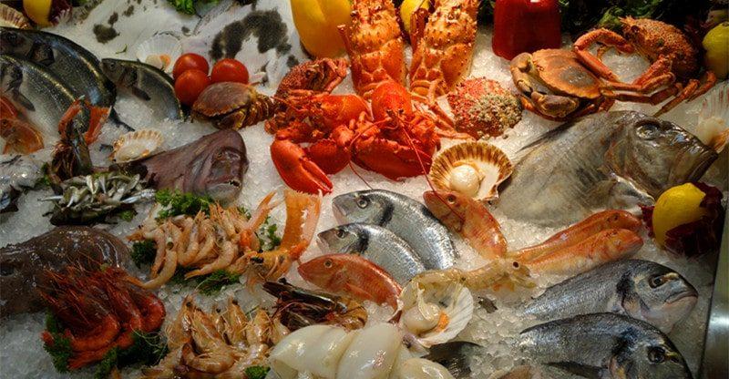 eating seafood good for health