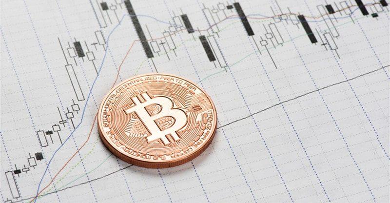 elon musk replies to bitcoin warning