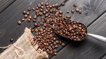 high quality coffee beans