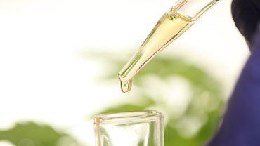 how cbd oil made