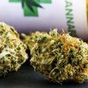 methods of cannabis consumption