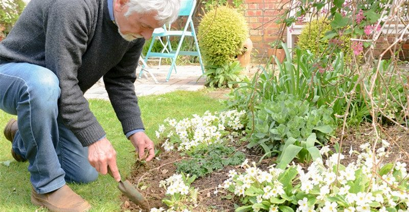 supplies for gardening enthusiast
