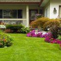 transform garden